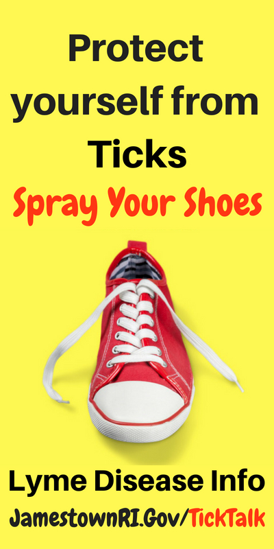 Protect yourself from ticks and spray your shoes flyer